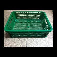 NAP-204NS(녹색)